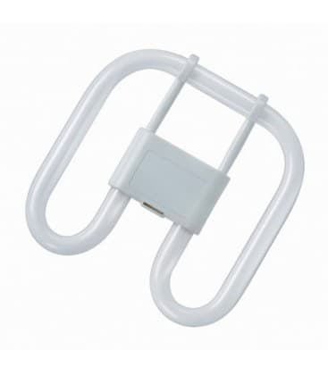 2D Cfl Square 16W 835 GR8 2PIN SQUARE-16-835-2P 4050300816838