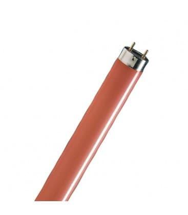 TL-D 36W-15 G13 Rouge