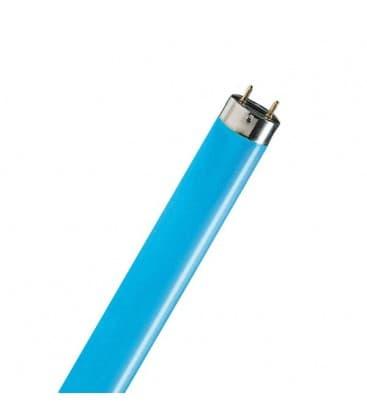 TL-D 36W-18 G13 Azul