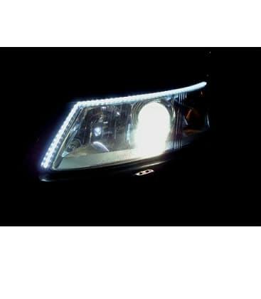 LED strips 12V 3528 2,4W/m IP20 cool white