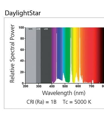 Daylightstar T8 F15W 5000K G13