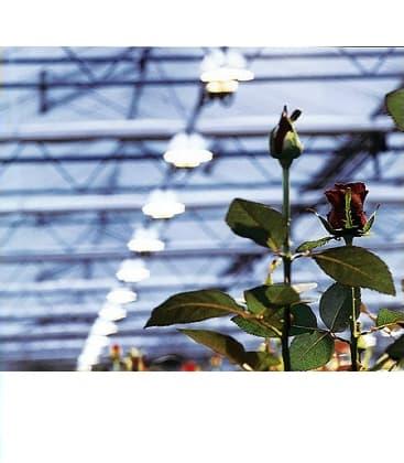 HPS-NAV KIT 400W for professional cultivation of plants