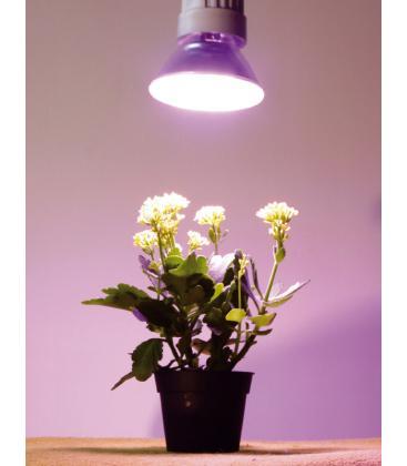 Reflektor za rastline 15W-827 E27