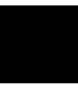 Navojni obroč za G13 okov
