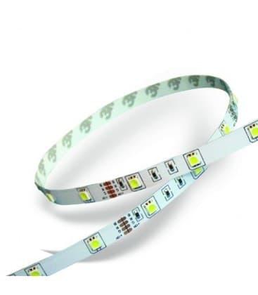Bandes de LED 12V 3528 4,2W/m IP20 blanc froid