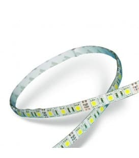 LED strips 12V 5050 14,4W/m IP65 waterproof warm white